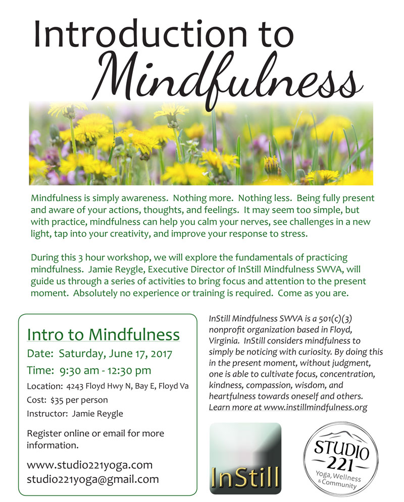 Introduction to Mindfulness: 9:30am-12:30pm, Saturday, June 17, 2017, at Studio 221, Floyd, Virginia. Explore the fundamentals of practicing mindfulness.