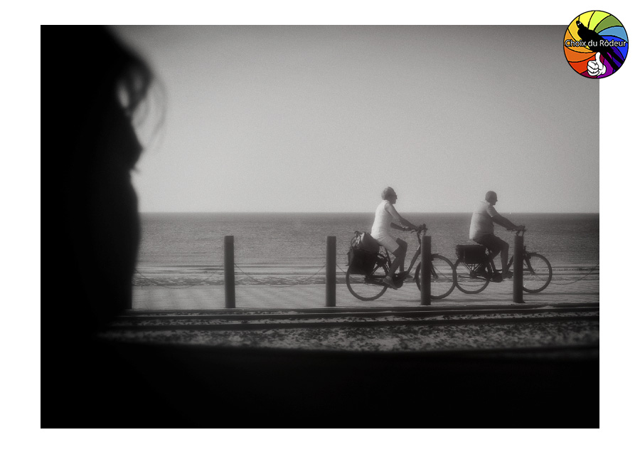 2016, forum, Instinct-Photo, photo, rôdeur, sélection, Stayfree, Ostende, vélo, mer, promenade