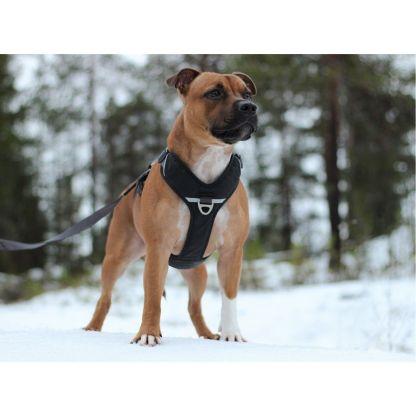 Instinct de chien boutique I harnais dog copenhague vente de harnais antitraction