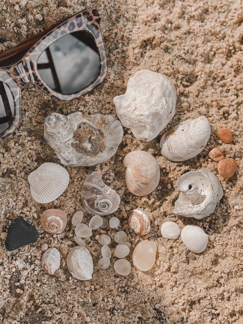 cape may diamonds found at higbee beach