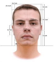 525px-Face_Measurements_Lombroso's_method.jpg