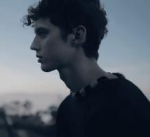 Troye Sivan - Copy.png