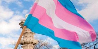 transgender-flag665.jpg