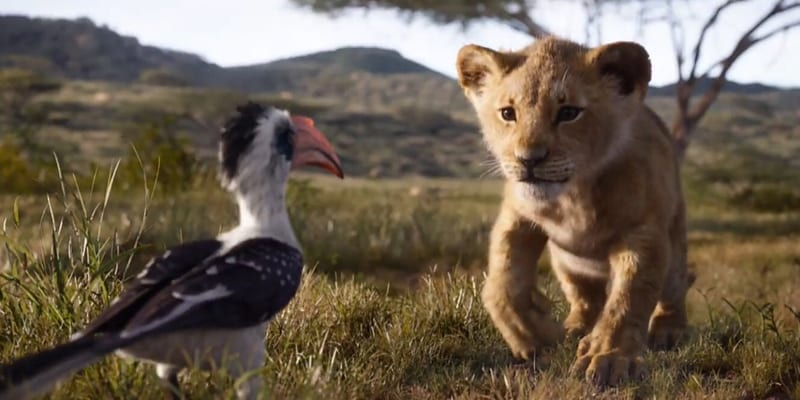 Zazu and Simba in the live-action film, 'The Lion King' (screen capture)