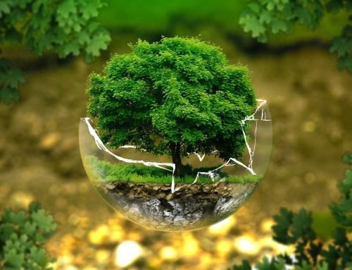 Sauve la planète!