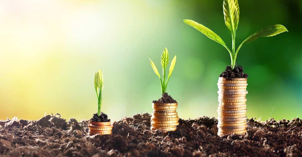 Gestão financeira no Agronegócio