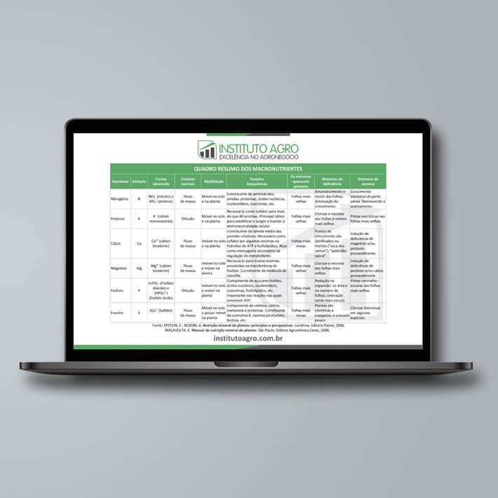 Quadro-resumo dos macro e micronutrientes