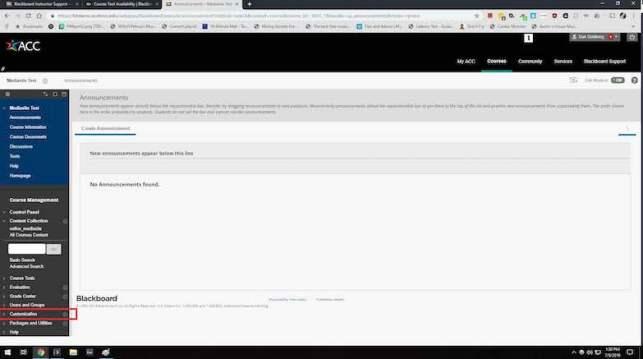 """Screenshot showing """"Customization"""""""