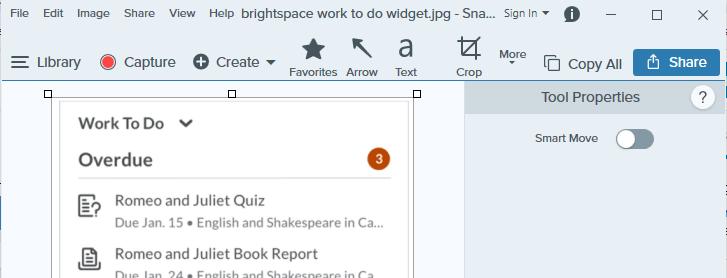 snagit editor window