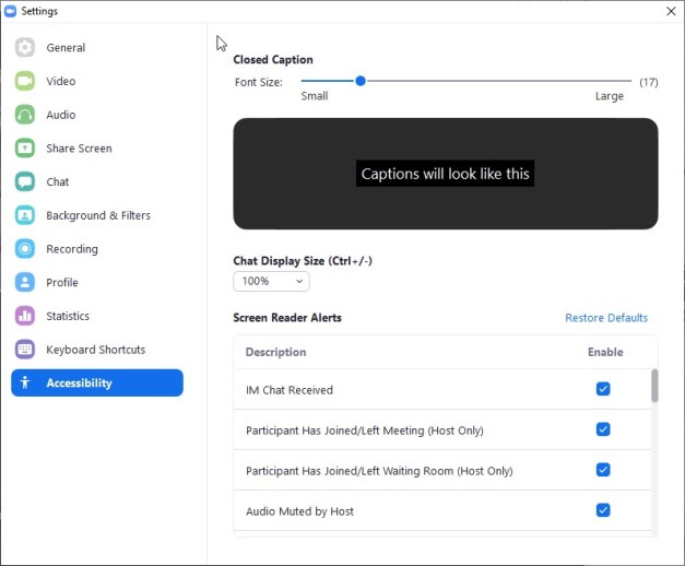 zoom settings accessibility