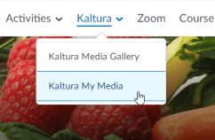 Brightspace Kaltura navigation screenshot