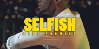 king-promise selfish instrumental freebeat