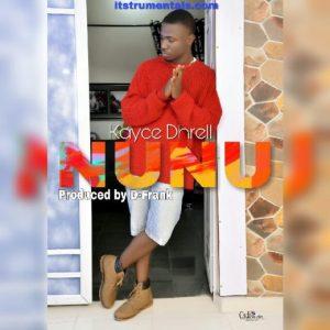 nunu beat instrumental