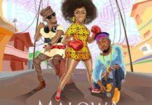 omawumi ft Dj Spinall Slimcase Malowa Lyrics