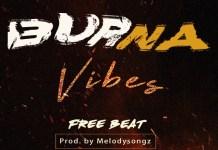 Download Burna Boy Type Free Beat 2018 2018