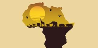 Africana free beat