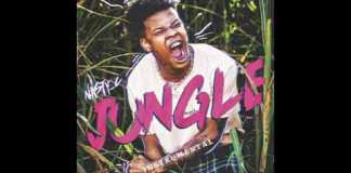 nasty c jungle instrumental