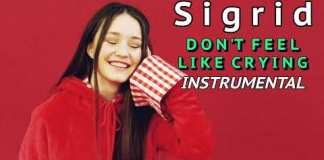 SIGRID - Dont Feel Like Crying Instrumental