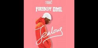 Fireboy Jealous Instrumental