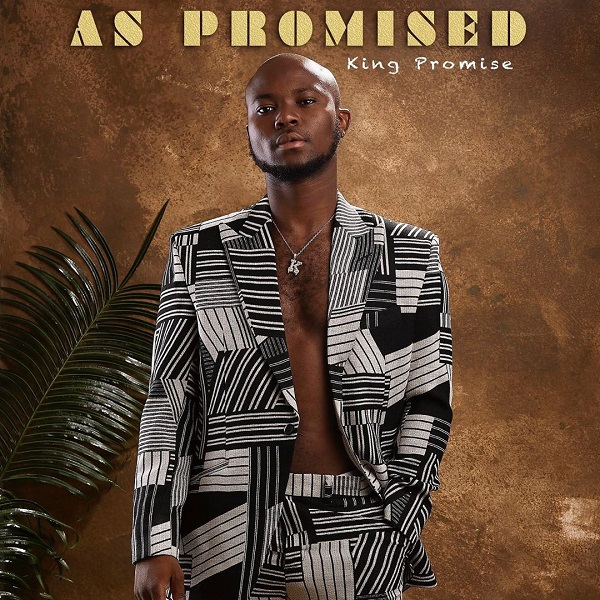 King Promise My Lady Instrumental