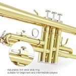 Eastar Gold Trumpet Brass Standard Bb Trumpet Set ETR-380 For Student Beginner with Hard Case, Gloves, 7 C Mouthpiece, Valve Oil and Trumpet Cleaning Kit 2
