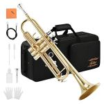 Eastar Gold Trumpet Brass Standard Bb Trumpet Set ETR-380 For Student Beginner with Hard Case, Gloves, 7 C Mouthpiece, Valve Oil and Trumpet Cleaning Kit