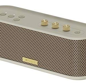 Roland Bluetooth Speaker with Guitar Input