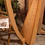 Roosebeck 23-String Heather Harp w/Full Chelby Levers 2