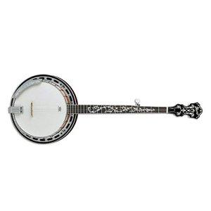 Ibanez B200 5 String Banjo w/Basswood Rim