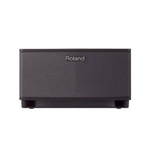 Roland CUBE-LT Lite Tabletop Monitor Amplifier, Black