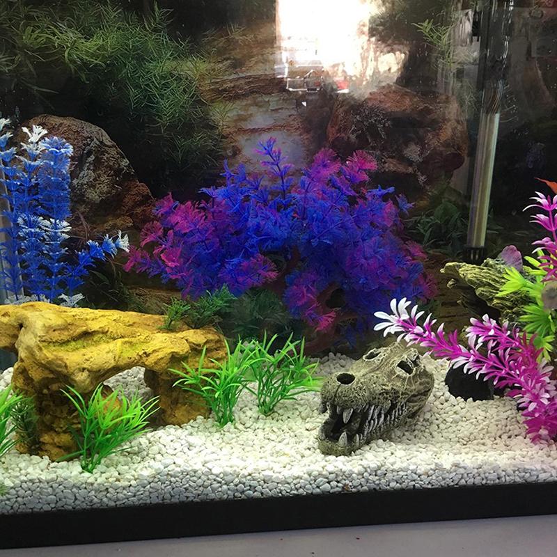 Large Aquarium Plants