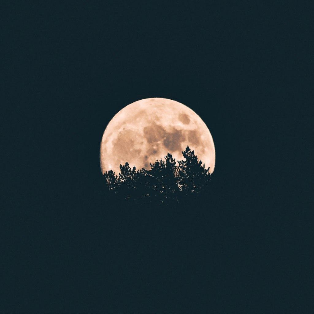 La primera luna llena del 2020 está por llegar con el 'Wolf Moon Eclipse'