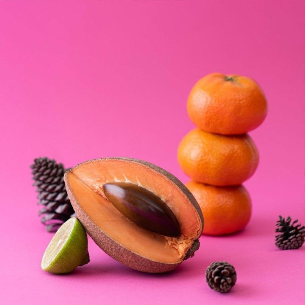 Incluye estos 5 ingredientes mexicanos en tu rutina de skincare de invierno