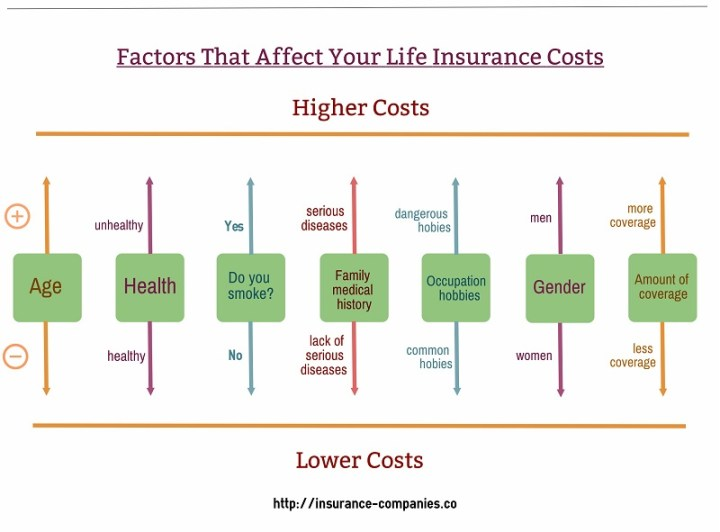 Factors That Affect Life Insurance Costs - Chart