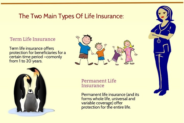 The Two Main Types Of Life Insurance