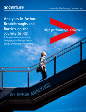 Analytics in Action: Breakthroughs and Barriers on the Journey to ROI