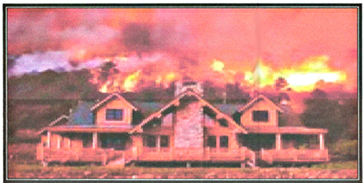 Fire damage Canyon Country | Insurance SCV | Carol Smith