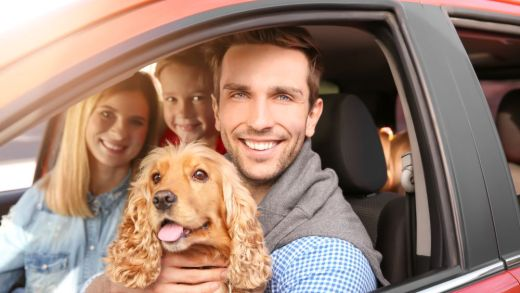 How to Get Cheap Car Insurance in Dallas, TX | Best Dallas Auto Insurance Quotes