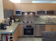 Miele retractable range hood, stove top, oven and dishwasher. Note the stainless steel toe kick on the bottom.