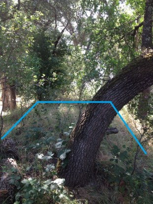 Blue line marks the approximate dimensions of an obviously man-made landscape; approach for rail bridge across Linda Creek.