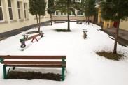 ogrod zimą 1