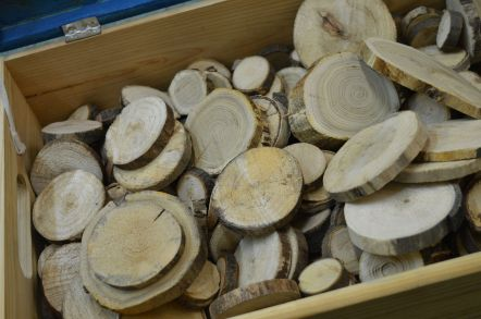 drewno-6