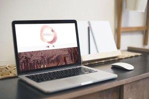 dmaria-laptop