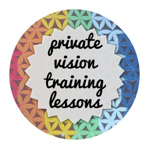 private vision training lessons