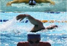 Collage estilos de natacion