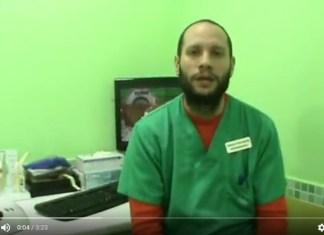 Foto de veterinario hablando