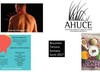 Resumen Tercera Semana Junio 2017
