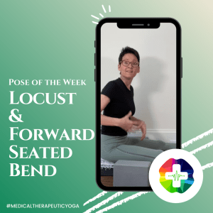Pose of the Week: Locust and Forward Seated Bend