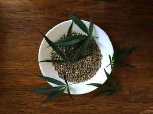 Hemp Seeds Chinese Herbal Medicine Natural