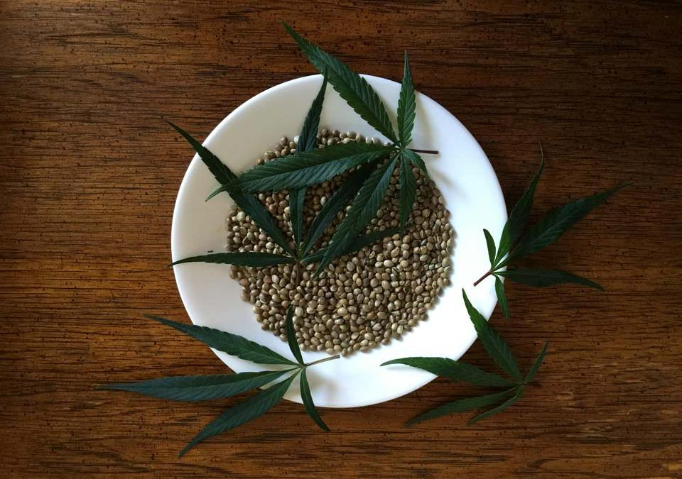 Hemp Seeds in Chinese Herbal Medicine